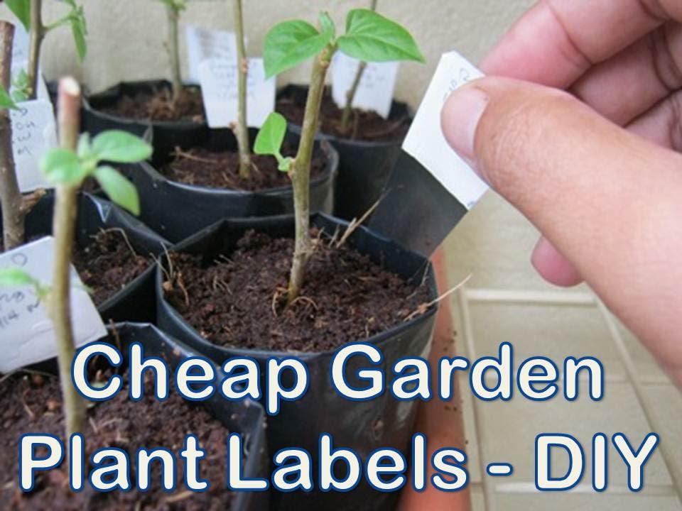 Homemade Cheap Garden Plant Labels Youtube