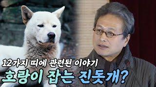 우리 문화 상징체계 속의 개 / 호랑이 잡는 진돗개?