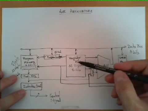 Block Diagram of the AVR Architecture  YouTube