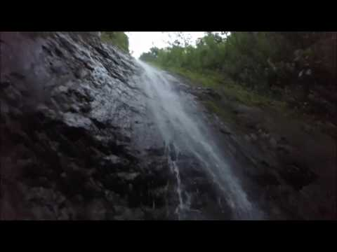 Manoa Falls Waterfall Hiking Tours With Surf You To The Moon