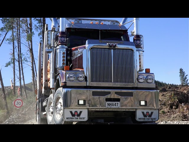 Western Star 4884 FXC 8x4 | Truck Test | Voices in the Trees
