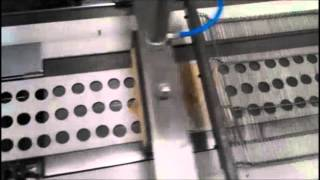 Spring Roll Machine, Burrito Machine, Samosa Machine