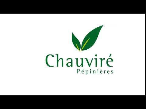Motion Design : Logo des Pépinières Chauvire