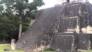 """Tikal means """"Place of Voices"""" or """"Place of Tongues"""" in Maya."""