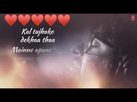 Pal Pal Dil Ke Paas lyrics WhatsApp status video