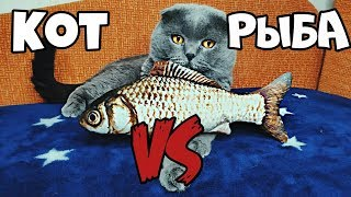 Кот Батон и Рыба