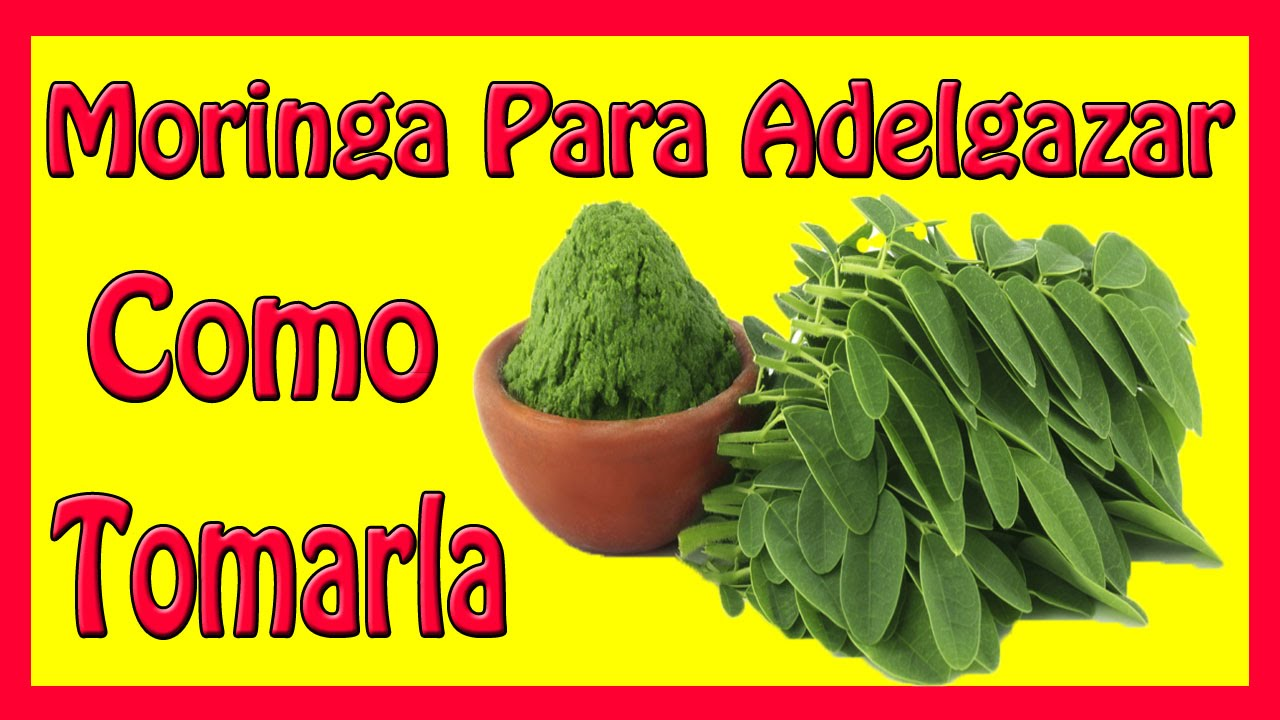Moringa Slimming - How to Take the Moringa - YouTube
