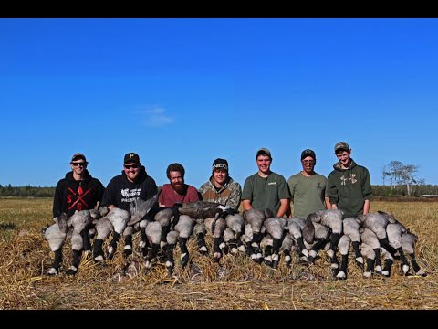 Manitoba Waterfowl Hunt