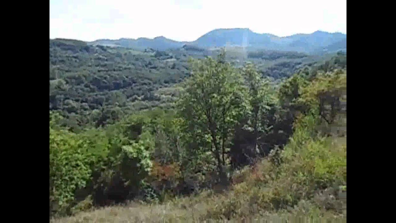 Mada Cheile Madei De Pe Drumul de Balsa  YouTube