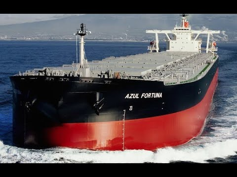 Top 10 Large Bulk Carrier Ships Launches