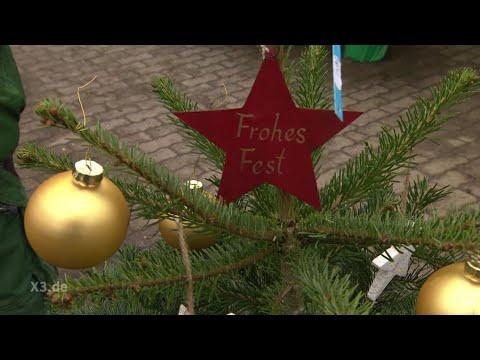 Ndr Weihnachtsbaum.Realer Irrsinn Die Tannenbaumsteuer Extra 3 Ndr