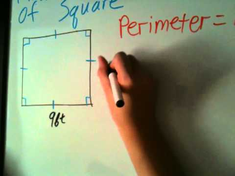 how to find out the perimeter in a square