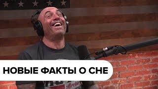 Джо Роган о сне с Мэтью Уокером  // Чем опасен недосып или 6-часовой сон