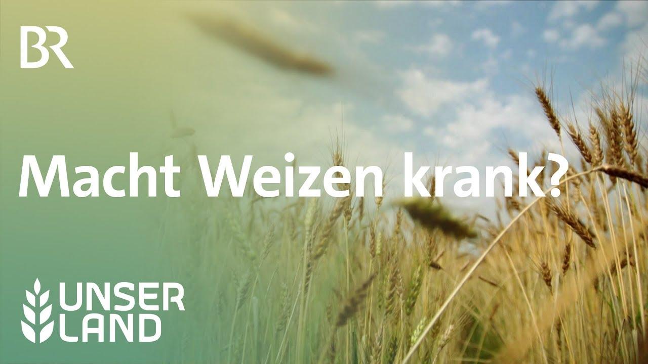 Download Weizen im Visier: Macht das Getreide krank? | Unser Land | BR Fernsehen