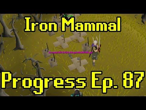 Oldschool Runescape - 2007 Iron Man Progress Ep. 87 | Iron Mammal