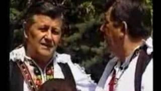 Ilija i Marko Begic - Bosno moja dome mio