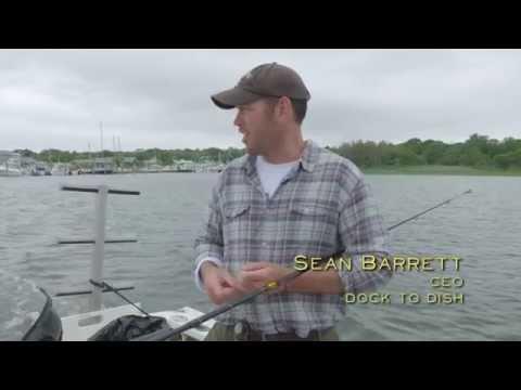 Food Rebel   Sean Barrett   Dock to Dish