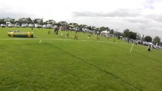 Beth & Holly - Agility Competition (training Round)