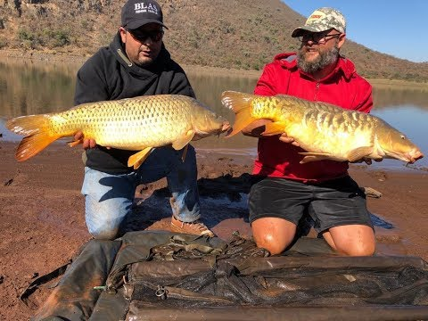Bivane Dam Carp Fishing Slow Start Bu Amazing Ending