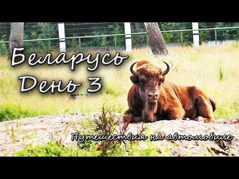 Путешествия на автомобиле ~ Беларусь ~ День 3