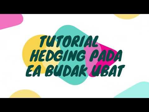 teknik-hedging-dengan-ea-budak-ubat-1.51