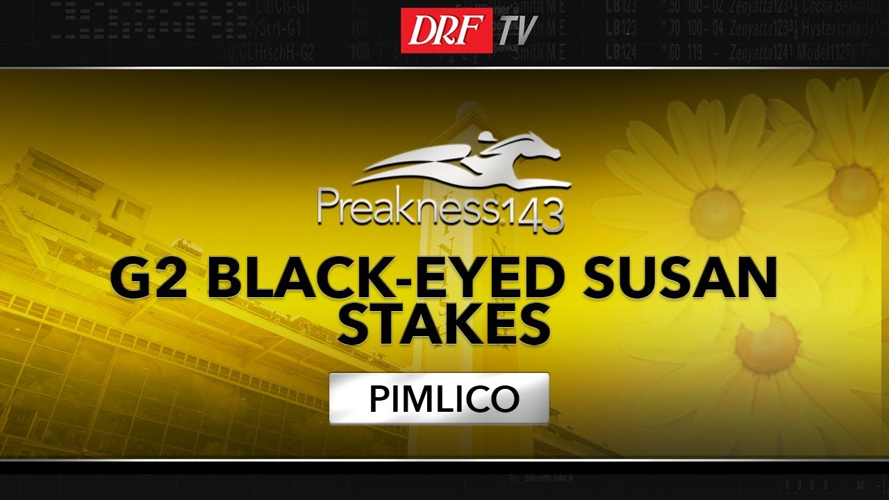 DRF Bets Friday Race of the Day - Black-Eyed Susan Stakes 2018