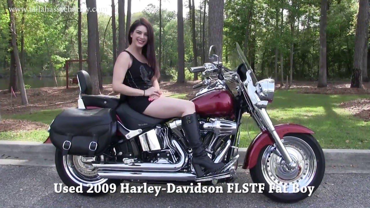 2009 Harley Davidson Fat Boy for sale on Craigslist - Georgia
