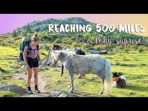 REACHING 500 MILES & PONY SURPRISE! 🦄