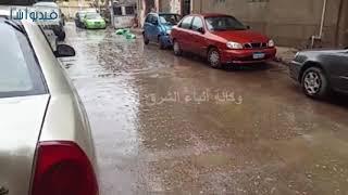 بالفيديو : محافظة القليوبية تتعرض لموجة من الطقس السيئ وسقوط الأمطار