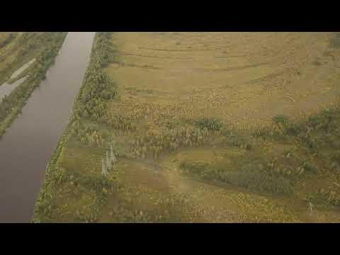 Участок под санаторий на берегу реки Тура в сосновом бору. Тюмень. Граничит с санаторием Геолог.