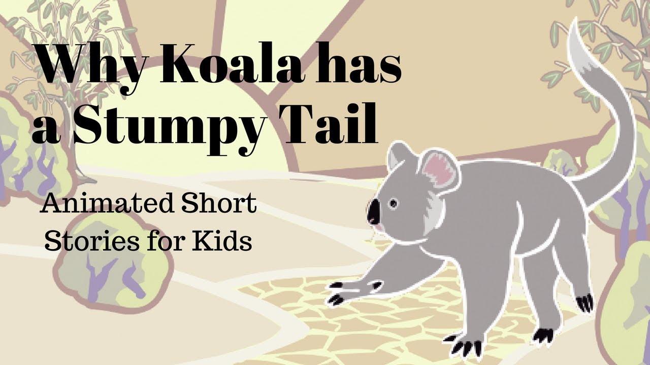 Why Koala Has A Stumpy Tail Animated Stories For Kids Youtube First attempt at drawing a cartoon koala bear. why koala has a stumpy tail animated stories for kids