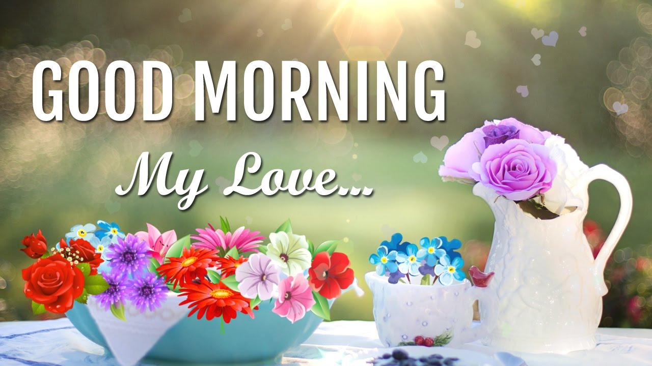 Good Morning Love Image, Message, Sms, Gif, Sayings, Greetings, Whatsapp  Video, Wallpaper