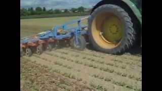 Plečkování řepy v Krchlebech, traktor automaticky řízen pomocí Trimble CFX-750 RTK + EZ-PILOT podle