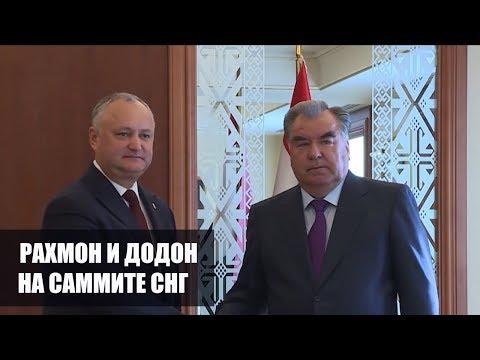 Таджикистан и Молдова будут сотрудничать в сельском хозяйстве