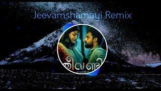 Jeevamshamayi Song Remix   Theevandi