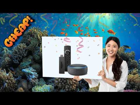 CHEAP: Become A Streamlord With $20 Off This Fire Stick And Echo Dot Combo