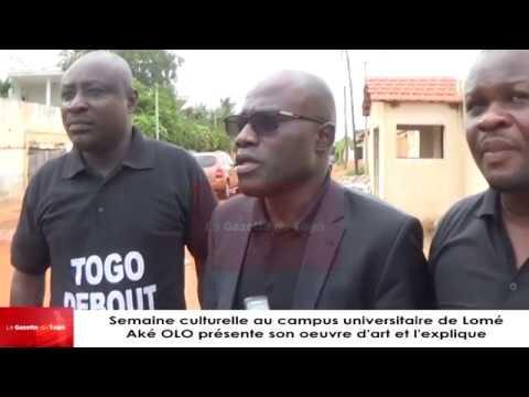 « Ce qui n'est pas acceptable en Allemagne qu'on ne puisse pas le recommander au peuple togolais »