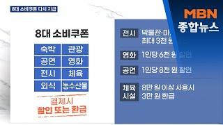 1천만 명 8대 소비쿠폰 지급…할인·관광·문화행사도 재…
