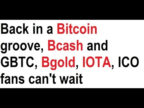 Back in a Bitcoin groove, Bcash and GBTC, Bgold, IOTA, ICO fans can't wait