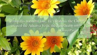 A Maharishi Vedic Garden