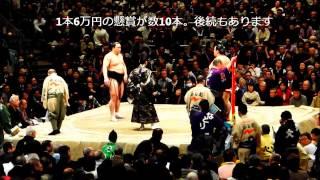 2013年大相撲ひゃつばsy12日目、いままで全勝の日馬富士と6勝5敗の琴...
