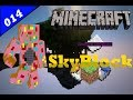 Skyblock Ep 14: I get Overlord! What is this Madness!