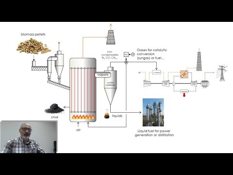 Biomass and Biogas Thermal Power Plants