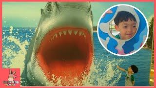 아쿠아리움 테마파크 가서 만난 상어가족 이야기 ♡ 해양 박물관 물고기 만나고 상어가족 동요 부르기 Aquarium Shark visiting | 말이야와아이들 MariAndKids