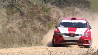 Eli Evans and Glen Weston Honda Civic on Valla SS Coffs Coast Rally