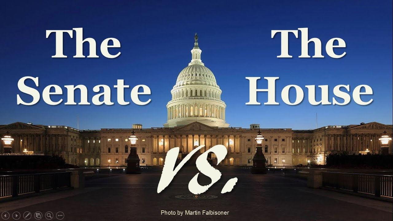 house of representatives vs senate House of representatives vs senate short brief difference.