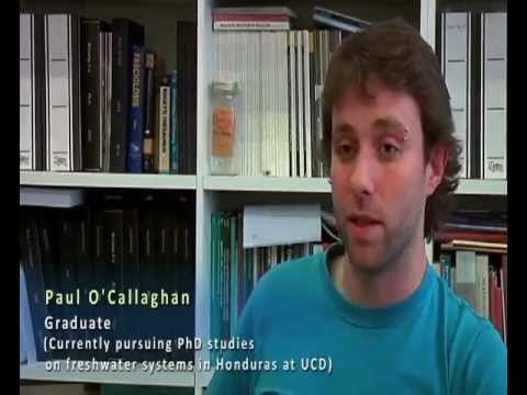 MSc Environmental Science (University College Dublin)