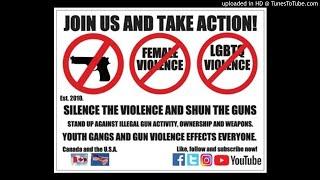 Silence the Violence and Shun the Guns TV debut