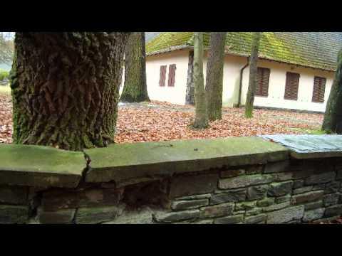 Bogensee Besichtigung bunker see und haus dr j goebbels