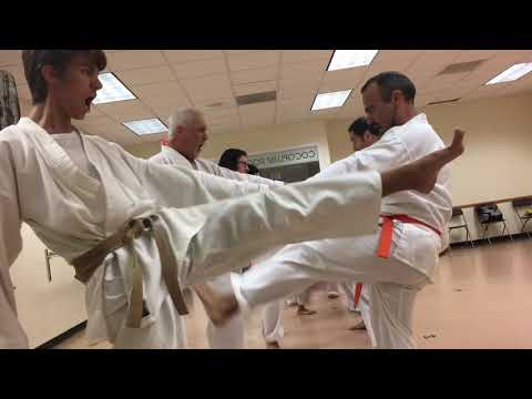Karate kicking drills with a partner for front kick